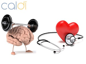 vitamin B6 có tác dụng gì cải thiện trí nhớ