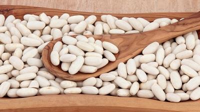 thành phần chứa trong hạt đâu trắng đậu trắng có tác dụng gì